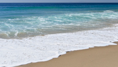 Photo of Beach to drill onshore for offshore gas