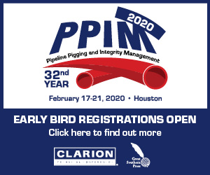 PPIM 2020 – Call for papers